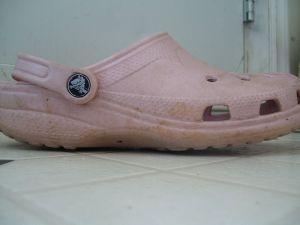 800px-pink_crocs_1001349