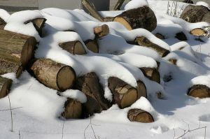 800px-firewood_in_the_snow